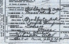 Detail from the Death Certificate of Sallie Wheeler York