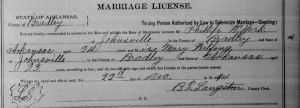 York-Wilfong Marriage License, 1894